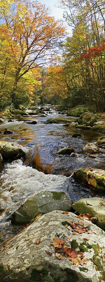 Flow of Autumn, Great Smoky Mountains National Park | Ed Kelley, Fine Art America Would Love To Go Someday!! Beautiful!!!