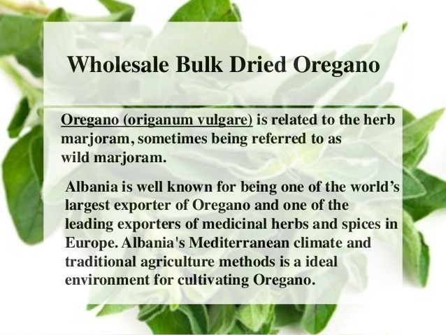 Wholesale Bulk Dried Oregano  Oregano (origanum vulgare) is related to the herb  marjoram, sometimes being referred to as ...