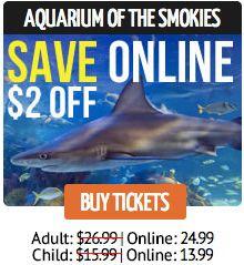 Best 25 Gatlinburg Aquarium Ideas On Pinterest