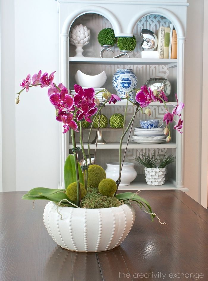 Creative container ideas for potting real or faux orchids. Tricks for growing them.  The Creativity Exchange