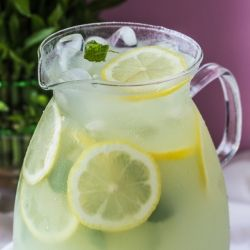 The ultimate health and detox drink- Indian Gooseberry juice with lime and mint