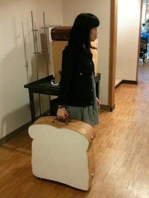 The sandwich suitcase