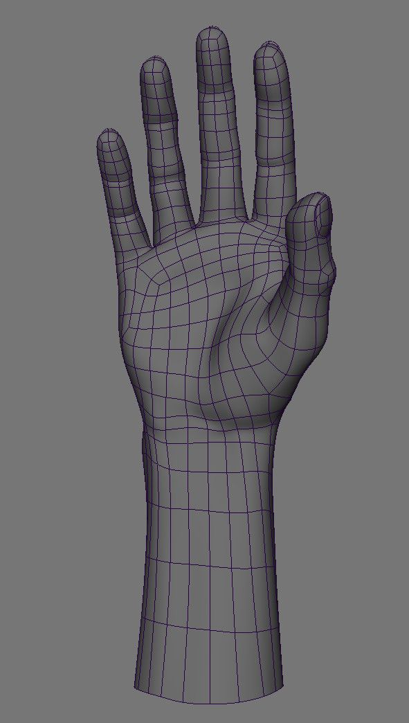 realistic rigged hand 3d fbx
