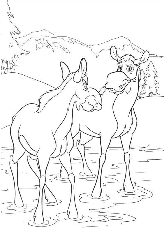kleurplaat brother bear 2 brother bear 2 disney coloring pagescoloring - Brother Bear Moose Coloring Pages