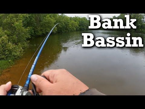 Bank Fishing for Bass - Jerkbait Fishing From the Shore - (More info on: https://1-W-W.COM/fishing/bank-fishing-for-bass-jerkbait-fishing-from-the-shore/)