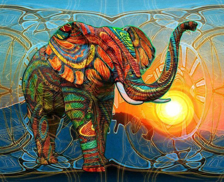 Картинки по запросу psychedelic elephant