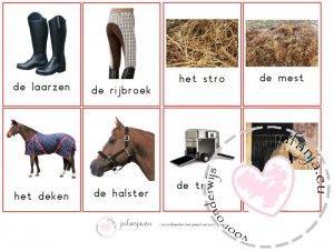 Woordkaarten thema paard (van Sinterklaas)(met en zonder lidwoord)