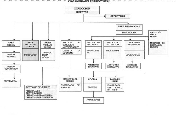 Organigrama estructural - Nivel Inicial