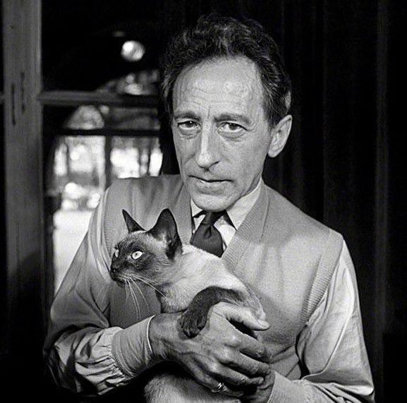 Jean Cocteau et son chat Karoun Animaux des stars - Verlina