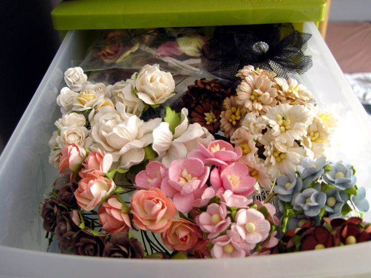 Kwiaty, kwiatki i kwiatuszki.