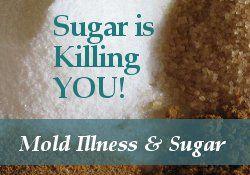 Surviving Toxic Mold   Mold Exposure   Mold Illness   Mold Testing   Mold Prevention - Mold Detox Diet