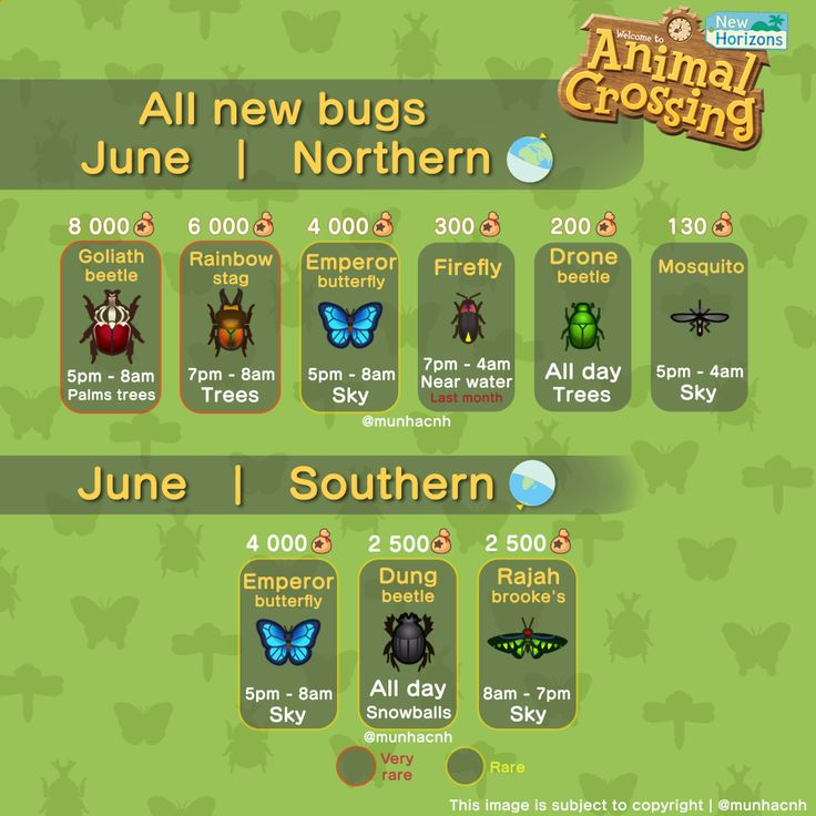 18++ Animal crossing new horizons dung beetle ideas