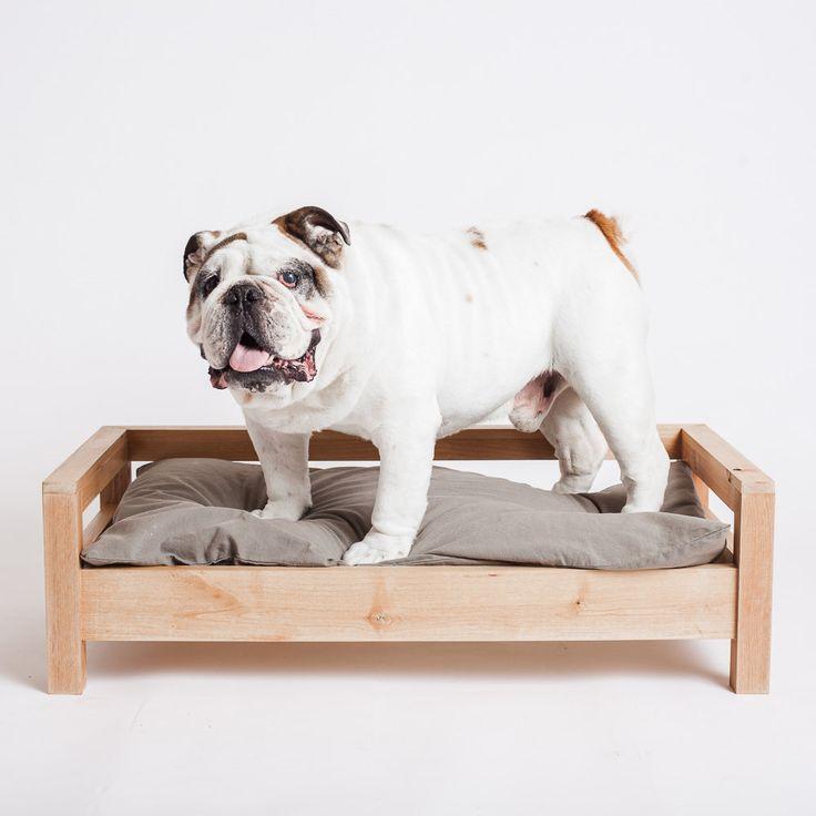 1213 best pet stuff images on pinterest | dog stuff, animals and