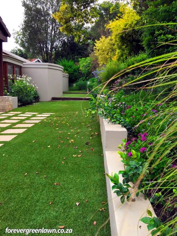 Maintenance free lawn, contrasting with pavers in a client garden. A forever green oasis.