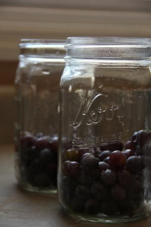 Easy Concord Grape Juice. SO much easier than the way I've been doing it for years. Boiling, crushing, straining...