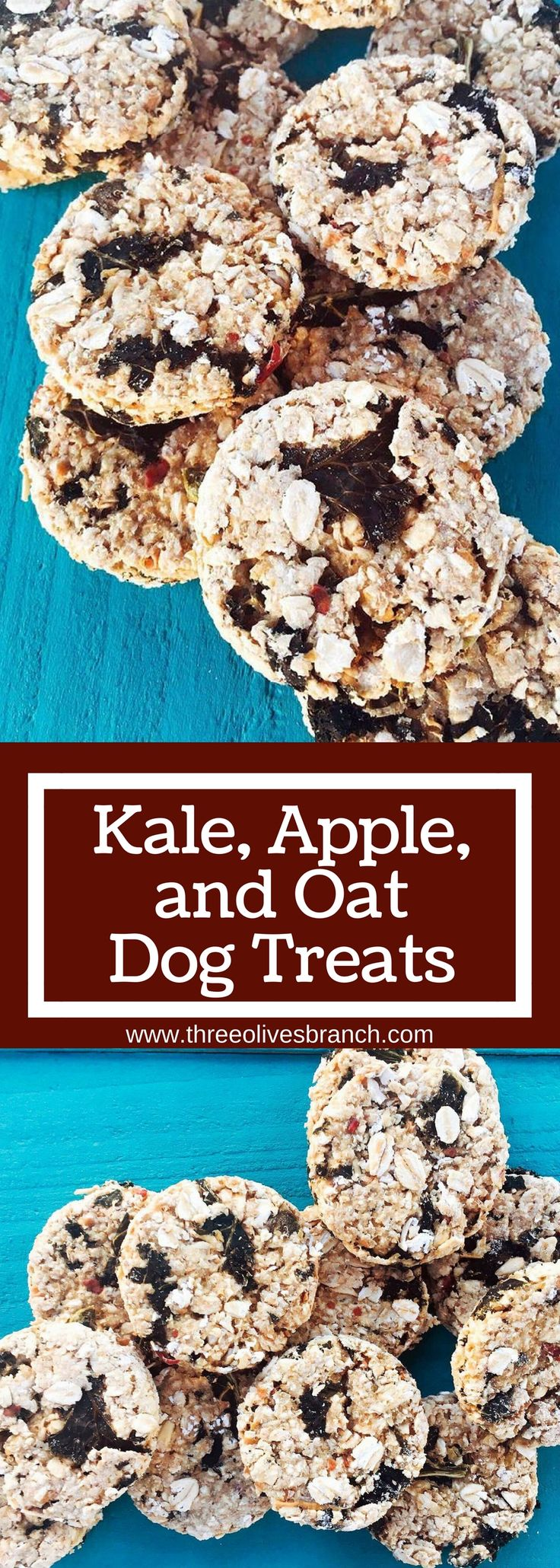 Kale, Apple, and Oat Dog Treats are a great healthy alternative for your pet! Simple to make and full of quality ingredients   www.threeolivesbranch.com