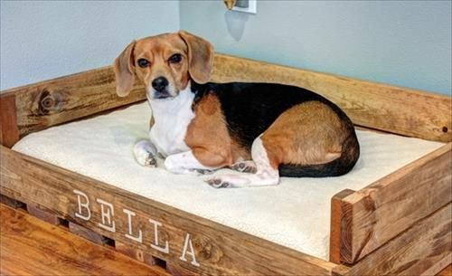 17 Best ideas about Dog Bed Pallets