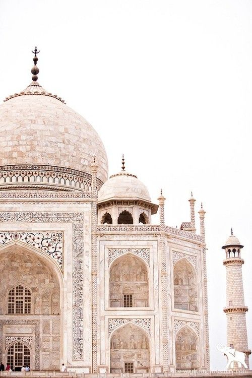 Taj Mahal in India! #travel #wanderlust