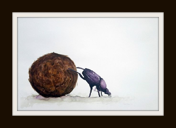 Hard Work (Dung Beetle) ARTIST LORNA PAULS Watercolour 1/2 Sheet 300g Bockingford paper Done March 2017