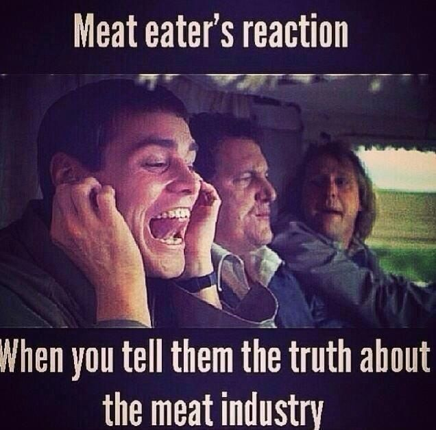 Funny Pro Vegan Memes : Best images about vegan quotes life humor and things