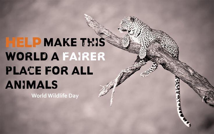 #worldwildlifeday #save #animal