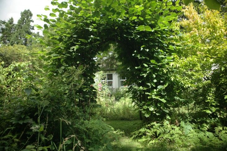 An artist's garden in Suffolk. Gardenista: Two hazels meet in an arch, dividing the lawn from a wilder area with a pond.