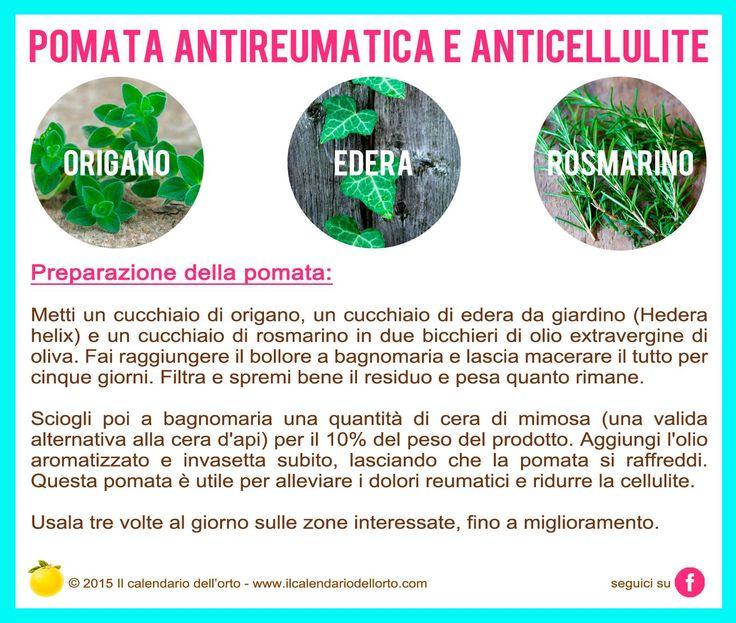 Pomata antireumatica e anticellulite