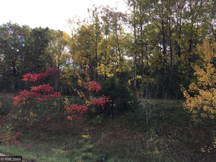 Beautiful residential lot for sale in Warren Township/Roberts, WI. Open builder! Build your dream home and enjoy the privacy this lot offers. Listed by Team Ferguson of Keller Williams Realty Integrity WI/MN.