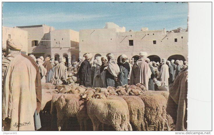CPSM ALGERIE SUD ALGERIEN OASIS - Au Marché, Foire Aux Moutons - Algérie