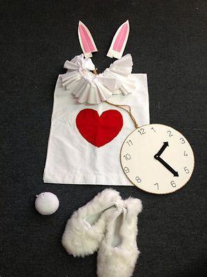 Handmade Tea Party Alice in Wonderland White Rabbit Costume Halloween Kids Adult | eBay Mad Hatter