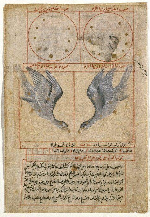 Islamic Miniature between 1500 and 1599