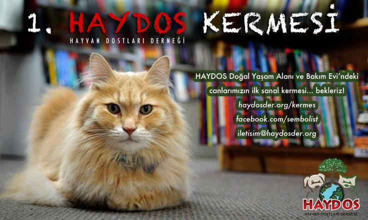 I. HAYDOS (Sanal) Kermesi başladı! Dostlarımıza destek olmak için aynı zamanda kermesimizde satılacak ürün bağışında bulunabilirsiniz. Bilgi için: www.haydosder.org/kermes    #hayvan #kopek #kedi