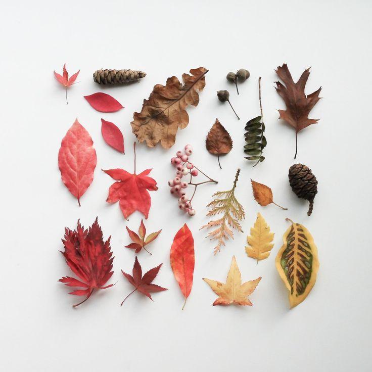 september | humphrey and grace