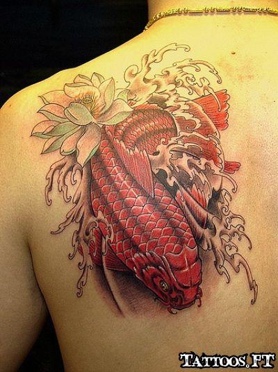 Tattoos carpas koi koi carp tattoo pinterest animais for Red koi tattoo