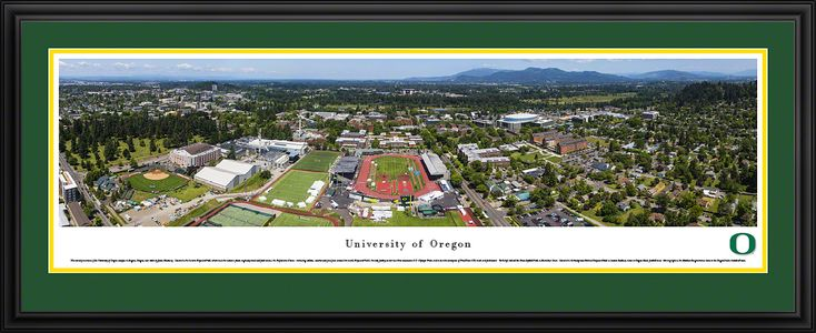 Oregon Campus during Prefontaine Classic Panoramic Poster $199.95