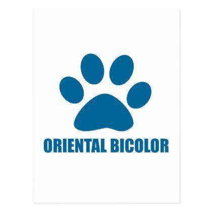 ORIENTAL BICOLOR CAT DESIGNS POSTCARD - postcard post card postcards unique diy cyo customize personalize
