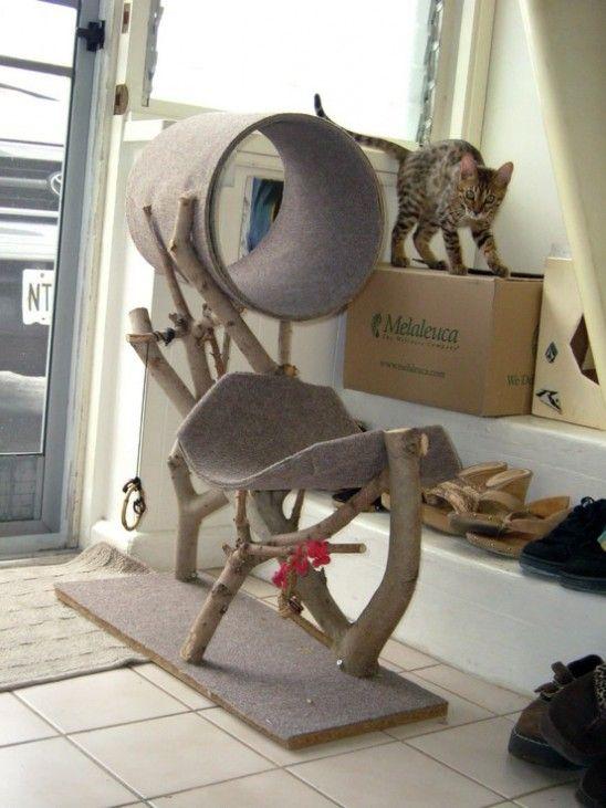 Pet Crafts & DIY Showcase | Home | PetFamous.com