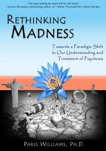 """More on """"Rethinking Madness: Towards a Paradigm Shift in our Understanding and Treatment ofPsychosis"""""""