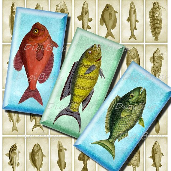 Vintage Fish Images, Digital Collage Sheet, 1x2 inch Domino size, for Magnets Pendants Decoupage, Printable Fish Images, Instant Download