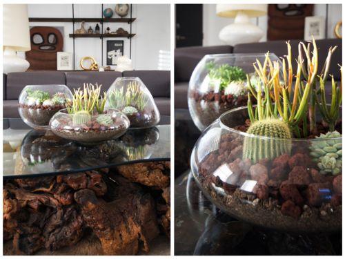 Home decor. DIY Terrarium