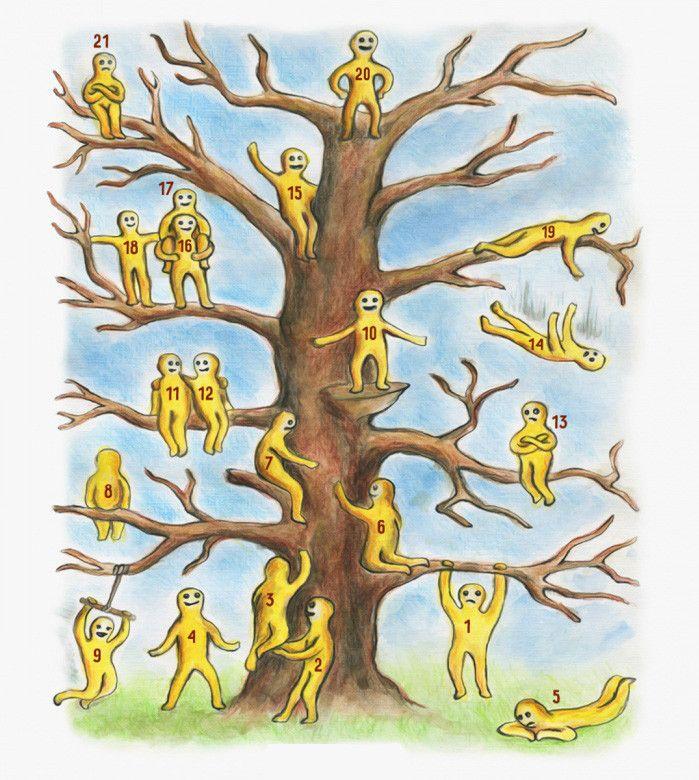 временем психологические тесты рисунок дерево магазин