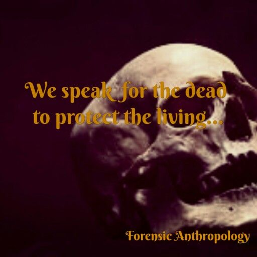 The forensic anthropologists skill in technology