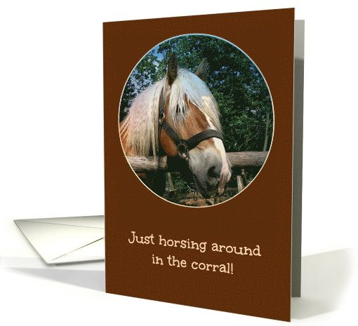 Horsing Around - From Horse's Mouth - Happy Birthday card
