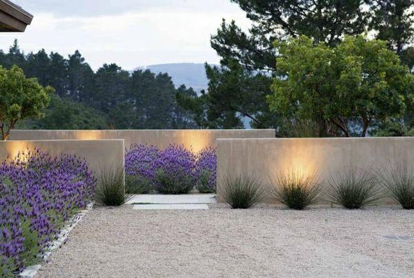 moderne gartengestaltung beispiele lavendel betonmauer