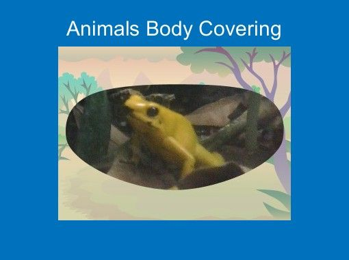 """Animals Body Covering"" - Free Books & Children's Stories Online 