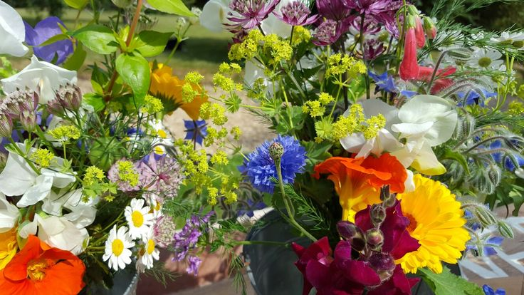 Close up of my May time gate sales. I started by selling jam jar posies at our garden gate, soon realising my own love of British seasonal flowers was shared by more than just my lovely neighbours.