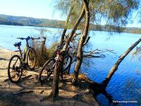 The Travelling Lindfields: Cycling in Sydney: Narrabeen Lagoon Trail - http://www.thetravellinglindfields.com/2015/05/cycling-in-sydney-narrabeen-lagoon-trail.html