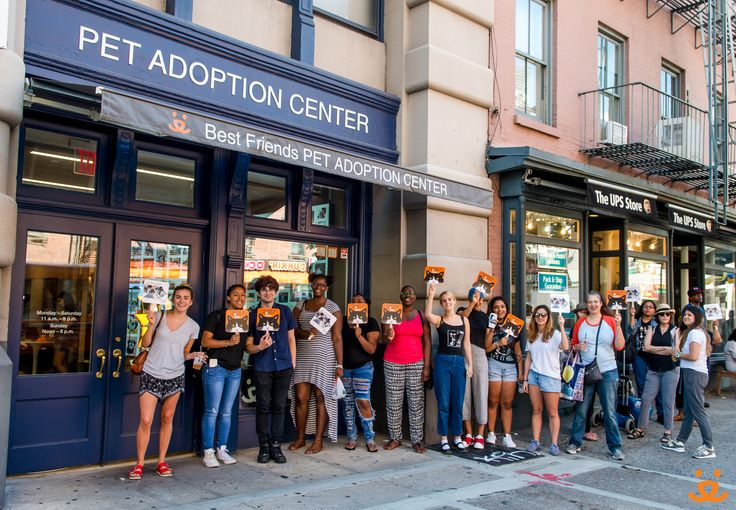 Prospective adopters wait for the opening of the Pet Adoption Center in New York City on Clear the Shelters day. The event drew nearly 500 visitors throughout the day.