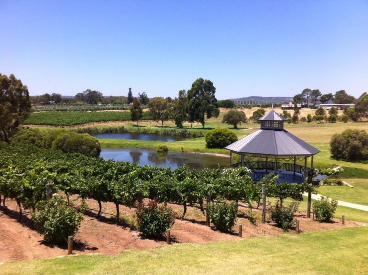 Read all about wine tasting at Sittella in the Swan Valley Perth