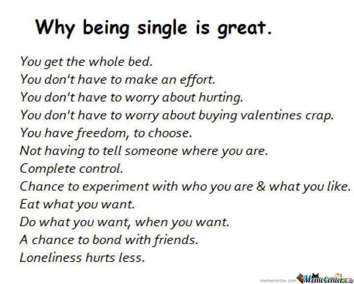 Funny Memes About Being Single : Funny memes about being single google search true